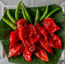 Bhut Jolokia Pepper the Second Hottest Pepper in the world native to Assam and North East India