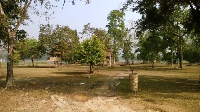 Chandubi Lake Birds, Dipor Bil Birds, Birdwatching Tour Assam, Migratory Birds Assam, Manas National Park Birdwatching, Kaziranga National Park Bird watching
