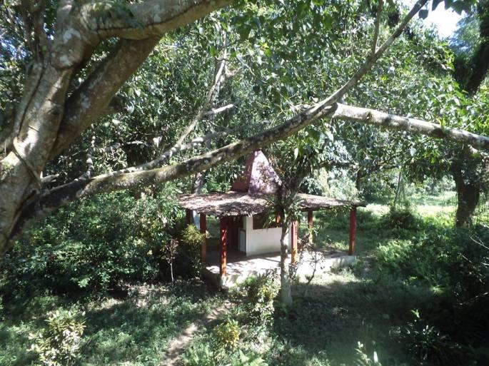 Tai Phake Ecotourism camp, Ecotourism Assam, Homestay Assam