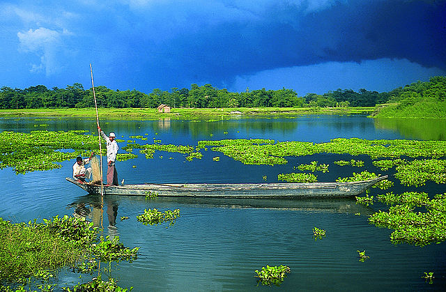 The Beautiful River Island of Majuli - the World's largest Inhabited River Island. Image Wikipedia