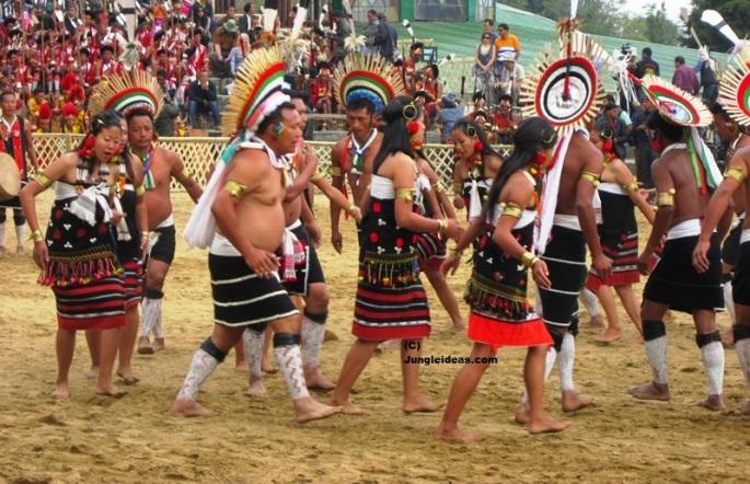 Hornbill Festival, Nagaland Tourism, Hotels Kohima, Dzukou Valley, Nagaland Tribes