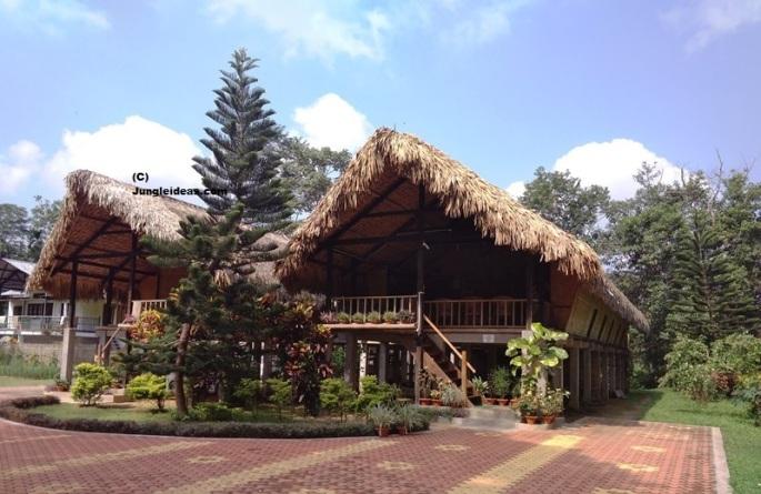 Singpho Eco Lodge, Awesome Assam Tourism, Assam Ecotourism, Homestay Assam