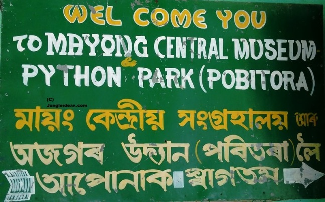 Mayong Assam, Black Magic Assam, Pobitora Wildlife Sanctuary, Awesome Assam