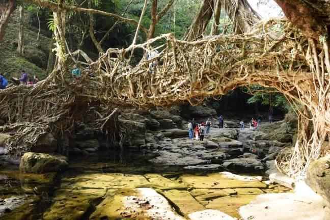 Shillong Tour, Mawlynnong clean village Meghalaya, Cherrapunjee Rain Meghalaya, Nohkalikai Falls Cherrapunjee, Meghalaya Tourism