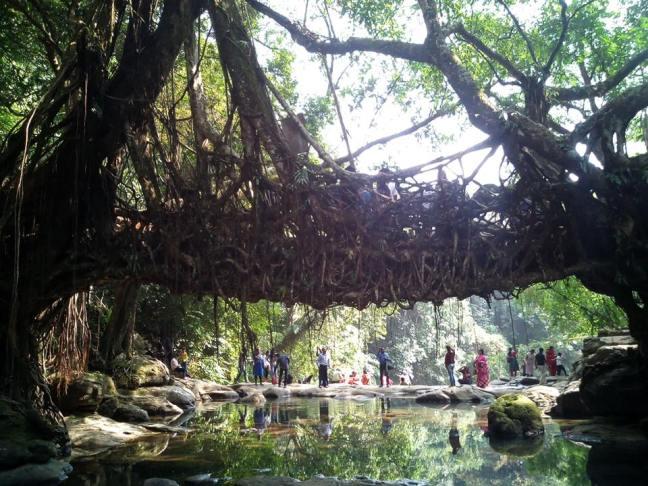 Shillong Tour, Meghalaya Tourism, Ecotourism Meghalaya, Festivals of North East India, Tribes of North East India