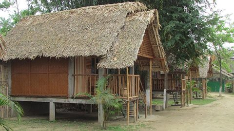 Tai Phake Ecotourism camp, Ecotourism homestay Assam, Ecotourism North East India