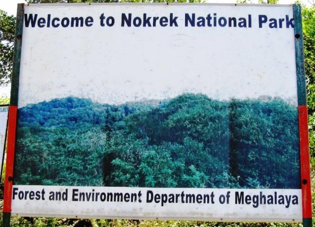Nokrek National Park Meghalaya, T